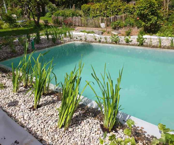 Garten-und Landschaftsbau Rico Fillsack - Startseite